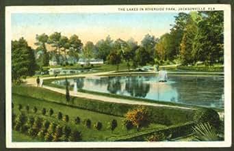 Riverside Park Jacksonville FL postcard 1923 at Amazon's