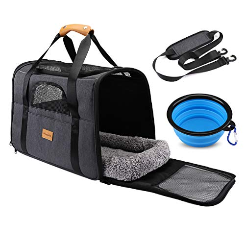 morpilot Pet Travel Carrier
