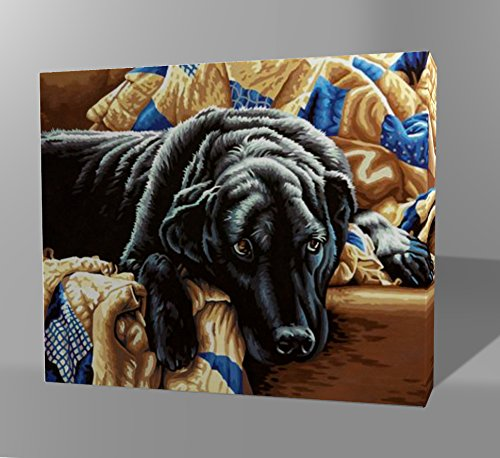 "Wooden Framed DIY Oil Painting – Adult Paint By Numbers Kit - (16 x 20"") - Dog Series (Guilty Pleasures)"