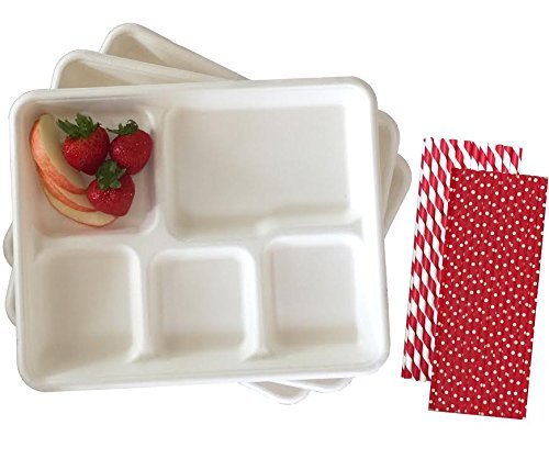 biodegradable tray - 4