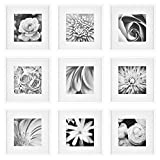 Gallery Perfect Gallery Wall Kit Square Photos with