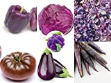 The Purple Pack - 7 Different Types of Purple Plant Seeds - Purple Cauliflower, Purple Tomato, Purple Carrots, and More by RDR Seeds