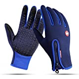CYG&CL Outdoor Winter Touchscreen Waterproof Warm Adjustable Size Gloves for Running, Hiking, Clamming, Skiing, Cycling, Driving for Men & Women (Large, Blue)