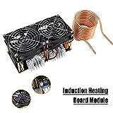 1800W ZVS Low Voltage Induction Heating Board Module Tesla coil 12V-48V Flyback Driver Heater DIY