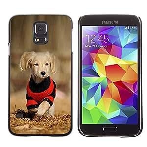 Caucho caso de Shell duro de la cubierta de accesorios de protección BY RAYDREAMMM - Samsung Galaxy S5 SM-G900 - Dog Puppy Labrador Golden Reriever Brown