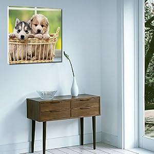 創美馨 寵物狗狗 兒童房墻壁畫 客廳臥室 辦公室 學校裝飾畫 寵物店