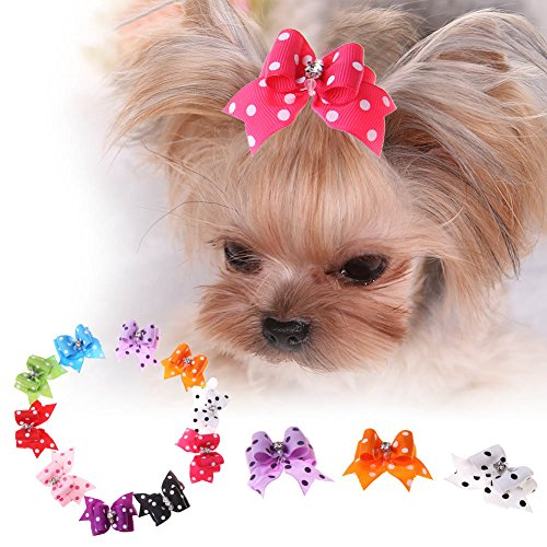 - Jocestyle 10pcs Pet Hair Accessories Dog Cat Mini Butterfly Hairpin Hair Clip Headdress