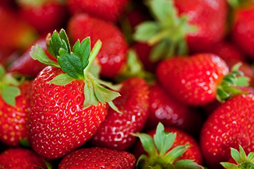 STRAWBERRY PATCH FRAGRANCE OIL - 8 OZ - FOR CANDLE & SOAP MAKING BY FRAGRANCEBUDDY- FREE S&H IN USA