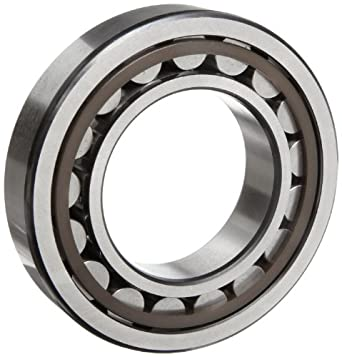NSK N232M Cylindrical Roller Bearing, Standard Capacity, Removable Outer Ring, Straight, Machined Brass Cage, Normal Clearance, Metric, 160mm Bore, 290mm OD, 48mm Width, 2200rpm Maximum Rotational Speed, 570000N Static Load Capacity, 430000N Dynamic Load Capacity