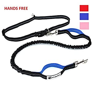 Dakota Premium Hands Free Dog Leash, Double Handle, Best Quality, Retractable Shock Absorbing Bungee, Reflective Stitching and Adjustable Waist Belt, 4 ft | For Running, Jogging & Hiking