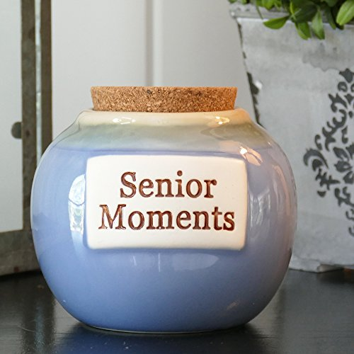 Senior Moments Stoneware Money Jar Bank; Gag Gift For Old People; Jar With Cork By Tumbleweed