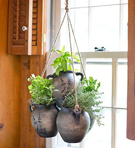 Hanging Herb Garden Clay Planter Kit Includes Soil and 5 Popular Herbs ()