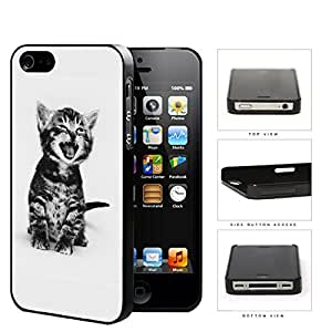 Cute Kitty Cat Portrait Hard Plastic Snap On Cell Phone Case Apple iPhone 4 4s