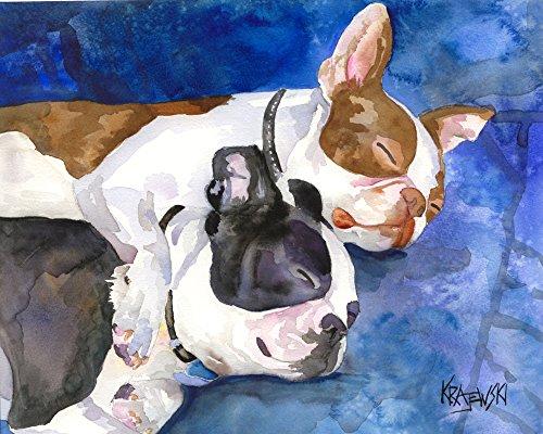 Boston Terrier Dog Fine Art Print on 100% Cotton Watercolor Paper