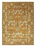 Jaipur RUG103276 Classic Arts & Crafts Pattern Wool Area Rug, 4' by 6', Orange/Green