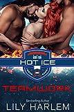 Teamwork: Hockey Sport Romance (Menage. Standalone Read) (Hot Ice Book 4)