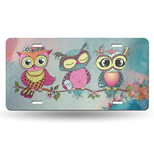 (QUZtww Front License Plate Owls 34 Bedroom Decoration Aluminum Rust Resistant Fashionable Custom Print with 4 Hole)