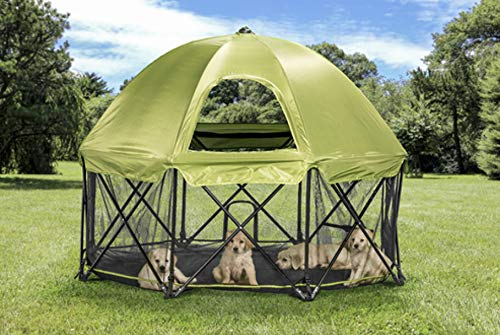 Carlson 8-Panel Foldable and Portable Steel Pet Exercise and Play Pen, with Carrying Case and Full UV Canopy, Green