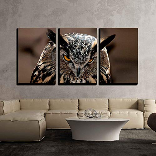 wall26 3 Piece Canvas Wall Art - Great Horned Owl Portrait - Modern Home Decor Stretched and Framed Ready to Hang - 16