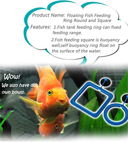 4 piezas Acuario Tanque de peces estación comedero Anillo flotante Círculo de flotador de alimentos alimentación, Comedero Seguro de Plástico Flotante para ...