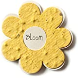 Bloomin Mini Yellow Flower-Shaped Seed Paper Enclosure Cards 9 Card Set - Perfect for Valentine's Day, Mother's Day and Wedding Anniversaries! Size: 2.25 x 2.25""
