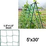 Mr.Garden Heavy-duty PE Plant Trellis Netting Green Garden Netting 1.57''-12 W5'xL30'