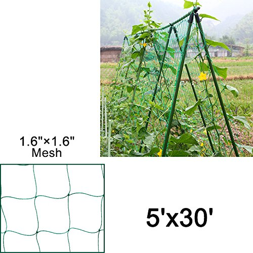 Mr.Garden Heavy-duty PE Plant Trellis Netting Green Garden Netting 1.57''-12 W5'xL30' by Mr Garden