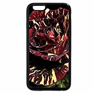 iPhone 6S / iPhone 6 Case (Black) Patterned rose.