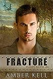 Fracture (Flight HA1710 Book 6)