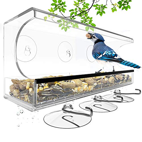 Trustzi Premium Window Bird Feeder - Strong Suction Cups for All Year Bird Watching - Removable Tray with Drain Holes for Easy Maintenance & Dry, Mold Free Seed, Extra Suction Cups & Hooks Included