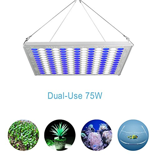TOPLANET Led Grow Light 75w Plant Growing Lamps Aquarium LED Blue/White Light for Indoor Greenhouse Grow Tent Hydroponic Veg Germination Growth Fish Tank Lighting Decoration by TOPLANET