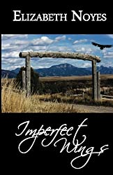 Imperfect Wings (Imperfect Series) (Volume 1)