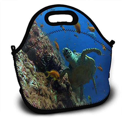 Moved Permanently Funny Turtle Lunch Bag Womens Insulated Zipper Lunch Tote Containers Customized Lunch Box For Kids Men -