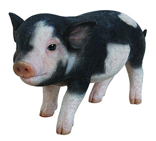 Hi-Line Gift Ltd Dark Brown Standing Baby Pig 5 5 87769-B
