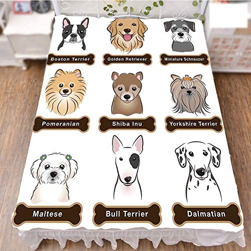 iPrint Bed Skirt Dust Ruffle Bed Wrap 3D Print,Dogs Nameplate Boston Terrier Domestic Animal,Best Modern Style Bed Skirt for Men and Women by 59''x78.7'' by iPrint