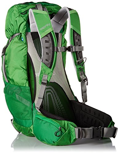 Osprey Packs Stratos 36 Backpack (2016 Model), Pine Green, Medium/Large by Osprey (Image #2)