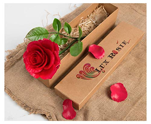 Lux Rosie Handmade Clay Rose in Gift Box | Beauty and The Beast Rose for Wedding Anniversary Gifts, Valentine