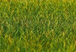 180485 - Faller - Fibras sueltas, 30 g, la hierba, a largo