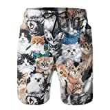Cat Breeds Packed Cats Men's Summer Casual Swimming Shorts Beach Board Shorts
