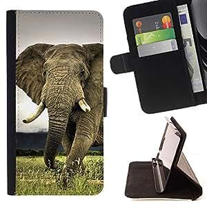 Momo Phone Case / Flip Funda de Cuero Case Cover - Linda criatura Animal Elefante Majestic - MOTOROLA MOTO X PLAY XT1562