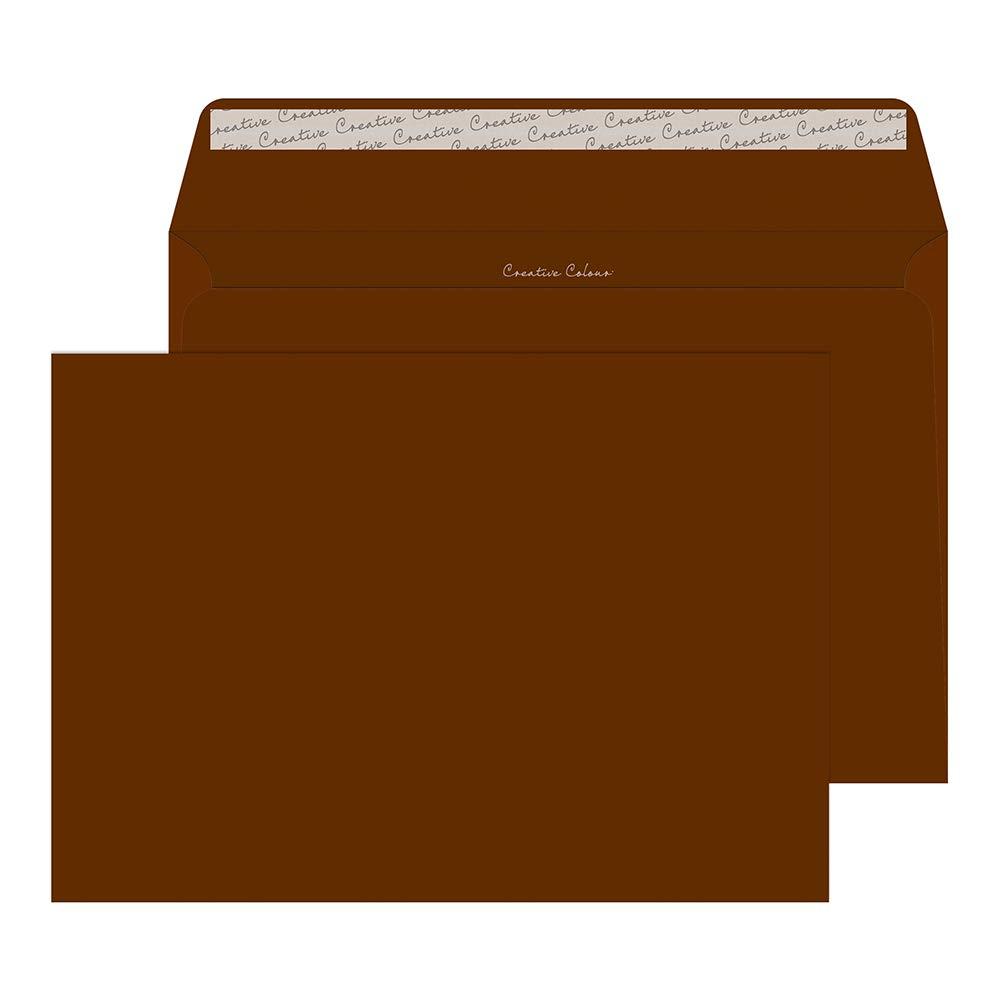 Blake Creative Color Booklet Invitation Envelopes, 9 x 12 3/4', Milk Chocolate, Peel & Seal (423-76) - Pack of 250 9 x 12 3/4 Blake Envelopes office