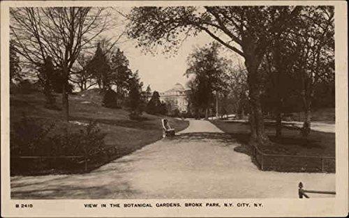 View in the Botanical Gardens, Bronx Park New York City, New York Original Vintage Postcard