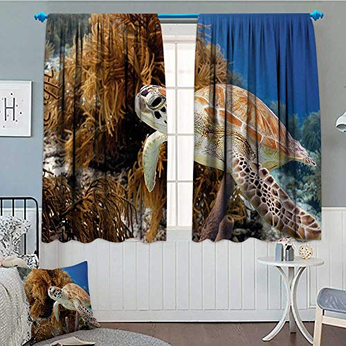 alilihome Turtle Window Curtain Fabric Coral Reef and Sea Turtle Close Up Photo Bonaire Island Waters Maritime Drapes for Living Room 72