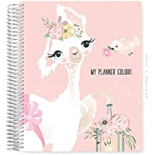My Planner Colibri Llama & Bird Blush - 12 MESES - Sem Data - Layout Mensal, Semanal, com Financeiro e Habit Tracker