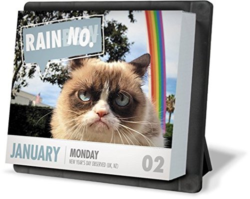 Grumpy Cat Year In A Box Calendar 2017 Import It All
