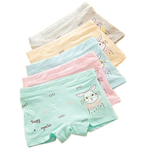 Cotton Lycra Boy Brief - CzBonjour Girls' Boyshort Toddler Briefs Cotton Underwear 5pk Panties (2-4 Years, C)
