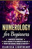 Numerology for Beginners: Numerology Foundations – Secret Meaning of the Numbers in Your Life – Insight and Guidance Toward Life Mastery
