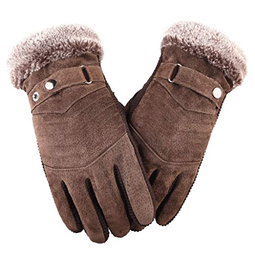 (Autumn And Winter Thick Velvet Riding Driving Windproof Pigskin Touch Screen Warm Wild Skid Cotton Riding Motorcycle Gloves (Color : Brown, Size : One size))
