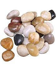 الحصى المصقول المزين بالنباتات من ICEBLUEOR - حصى حوض السمك بألوان متعددة طبيعية ناعمة وحصى حوض السمك وحصى المزهرية والأحجار الزخرفية الخارجية والصخور النهر، 1 كجم