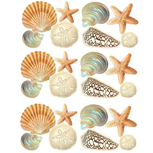 Wallies Wall Stickers - Wallies Wall Decals, Seashore Shells Wall Stickers, Set of 24